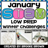 Winter STEM Challenges (January)