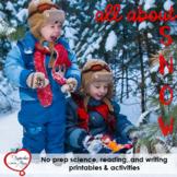 January / Winter Non-fiction Snow Mini Unit