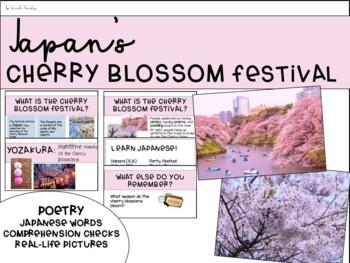 Japan's Cherry Blossom Festival