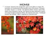 Japanese Autumn PowerPoint