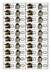 Japanese: I Have...Who Has..? Card Game, Katakana version