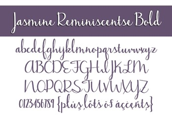 Jasmine Reminiscentse Bold Font for Commercial Use