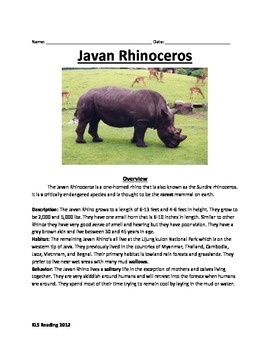 Javan Rhino - endangered extinct - information facts questions vocabulary