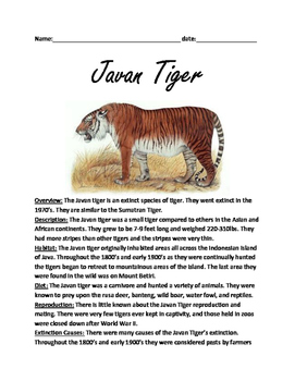 Javan Tiger - Extinct Review Article Lesson Facts Questions Vocabulary