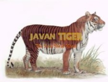 Javan Tiger - Power Point - Information Facts Pictures History