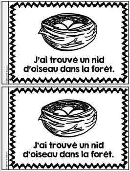 Je peux lire SÉRIE 2 - LA NATURE - French Emergent Reader Mini book