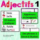 Je travaille mon vocabulaire: Les adjectifs 1 {French Adje