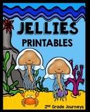 Jellies Journeys 2nd Grade