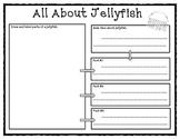 Jellies: The Life of Jellyfish (Journeys)