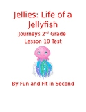Jellies: Life of a Jellyfish Assessment