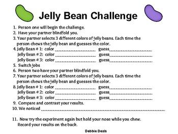 Jelly Bean STEAM