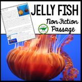 Jelly Fish Non Fiction Passage Close Read