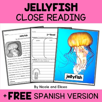 Jellyfish Close Reading Passage Activities