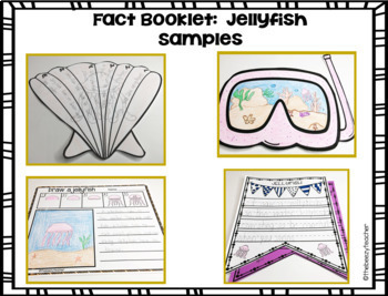 Jellyfish Fact Booklet