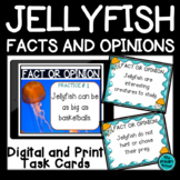 Jellyfish: Facts and Opinions