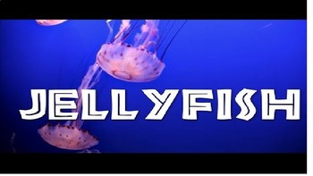 Jellyfish For Little Earth Conscience Learners