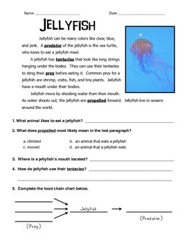 Jellyfish Informational Text