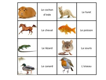 Jeux animaux (Animal game)