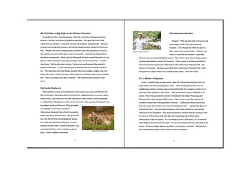 Jigsaw Reading Activity:  Repopulating Wolves in the Rockies