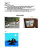 Jigsaw Recycling and Pollution Lesson