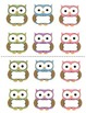 Job Cards for Classroom Job Chart BUNDLE:  64 Kids, Owl, and Bee Theme Included!