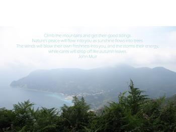 John Muir quote posters