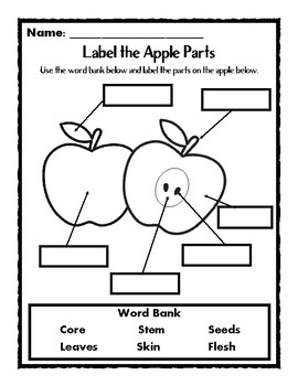 Johnny Appleseed Common Core No Prep Printables