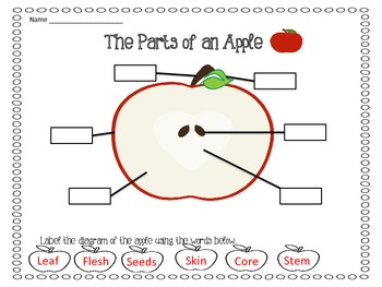 Johnny Appleseed Pack - Reading, Writing, Math, and Science Activities