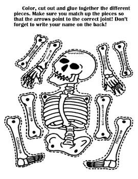 Joint Skeleton