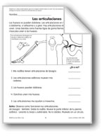 Joints/Las articulaciones