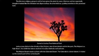 Joshua Tree National Park PowerPoint