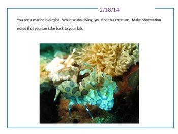 Journal Writing/Quick Write Topics -- 30 Days  -- Group 2