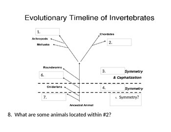 Journal (or do-now) packet for Introduction to Vertebrate Zoology