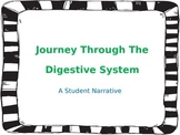 Journey Through the Digestive System