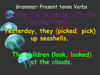 Journey's 2nd Grade Lesson 10, Jellies