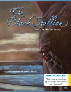 Journey's The Black Stallion TDA