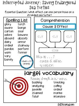 Journey's Unit 2 Grade 5 Lesson Outlines