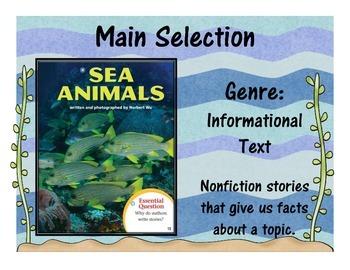 Journey's Unit 3, Lesson 11 Focus Wall - Sea Animals