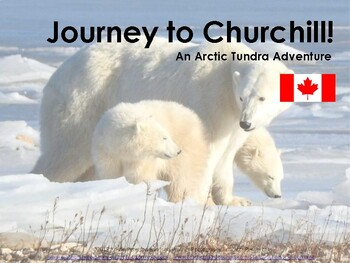 Journey to Churchill: An Arctic Tundra Adventure