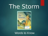 Journey's 1st Grade The Storm Words to Know Powerpoint