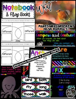 Journeys 1st Grade {Unit 3, Lesson 15, Animal Groups}