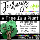 Journeys 1st Grade {Unit 5, Lesson 24, A Tree is a Plant}