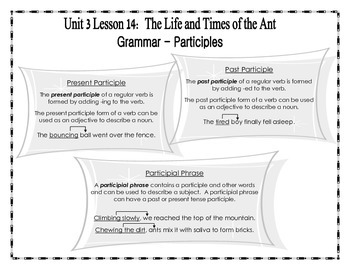 Journeys 2014 Version Fourth Grade Unit 3 Lesson 14  The Life & Times of the Ant