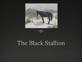 Journeys 4-10 Black Stallion Vocabulary Powerpoint