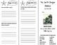 Journeys 4th Grade Unit 3 Trifolds Bundle (2011)