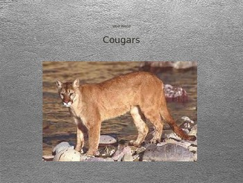 Journeys 5-10 Cougars Vocabulary Powerpoint