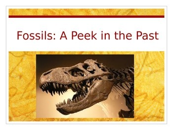 Journeys 6-28 Fossils