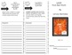 Journeys Common Core Trifolds for all of UNIT 4- SAVE $$$$$$$$$$