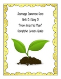 Journey's Common Core Unit 5, Story 5: From Seed to Plant
