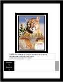 "Journey's ""Cougars"" Comprehension & Vocabulary Worksheet"